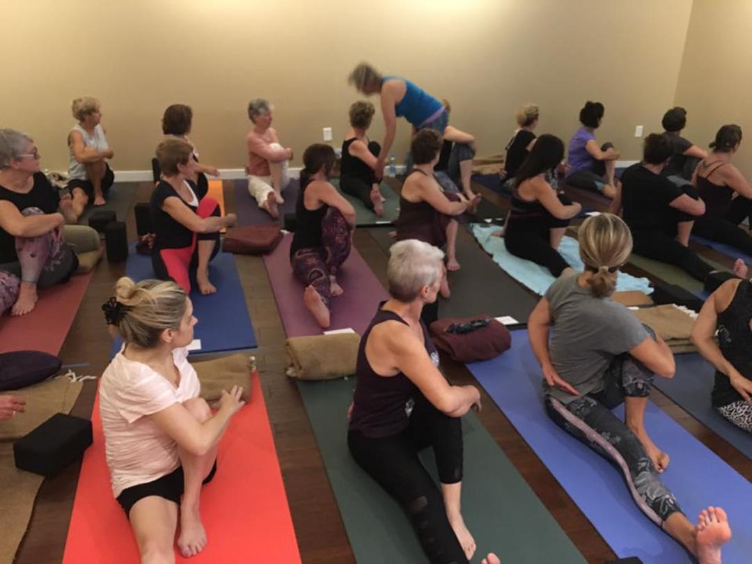 The Hard & The Soft 300 Hour Yoga Teacher Training ...